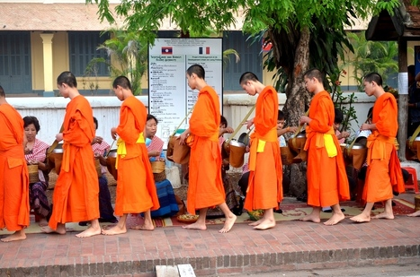 Bad Tourists and the Great Alms Controversy in Luang Prabang, Laos | TravelingBackpacking | Scoop.it