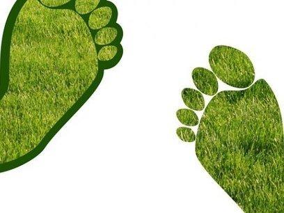 Curso Derecho al Medio Ambiente | Asómate | Educacion, ecologia y TIC | Scoop.it