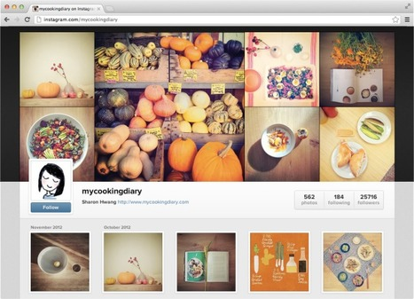 4. Welcome to Instagram on the web: Facebook-esque profiles aimed at new users | Online Identity- The Digital Age Fingerprint | Scoop.it