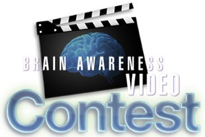 Society for Neuroscience - Brain Awareness Video Contest | Psychology and Brain News | Scoop.it