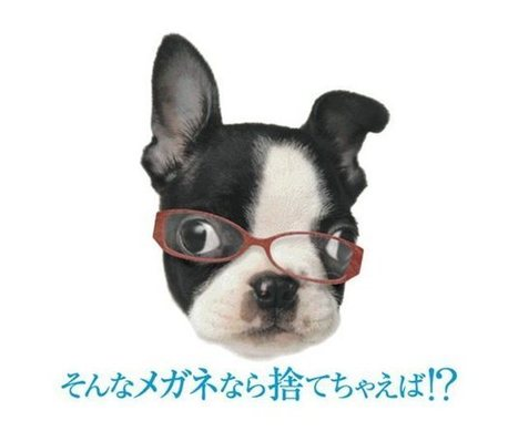 How to donate old eyeglasses in Japan | Alice Gordenker アリス ... | #LionsClubs In Sight Newsletter | Scoop.it