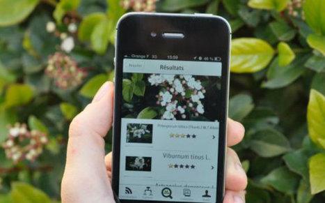 Pl@ntNet, l'application qui « shazam » les végétaux | Chimie verte et agroécologie | Scoop.it