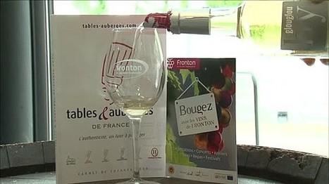 #Tourisme : le CDT @HauteGaronne, les chefs s'invitent dans le Vignoble AOP @Fronton #Oenologie @TvLocale_fr - Vidéo TvLocale Toulouse   Actualité du monde de la gastronomie   Scoop.it