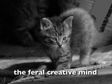 the feral creative mind   Harold Jarche   E-Learning and Online Teaching   Scoop.it