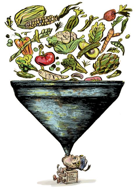 ¿Cómo se puede conseguir que los niños coman de todo? | Apasionadas por la salud y lo natural | Scoop.it