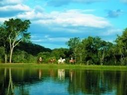 L'écotourisme au Brésil   Le tourisme durable   Scoop.it
