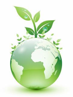 La educación ambiental y el medioambiente   Educacion, ecologia y TIC   Scoop.it