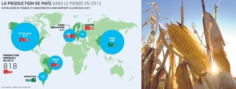 Les marchés céréaliers sous pression dans un contexte de forte réduction des stocks de maïs | Questions de développement ... | Scoop.it