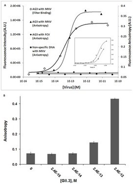 PLOS ONE: Ultrasensitive Norovirus Detection Using DNA Aptasensor Technology | Norovirus | Scoop.it