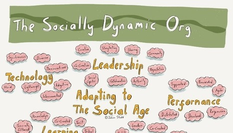 Creating the Socially Dynamic Organisation | IT and Leadership | Scoop.it