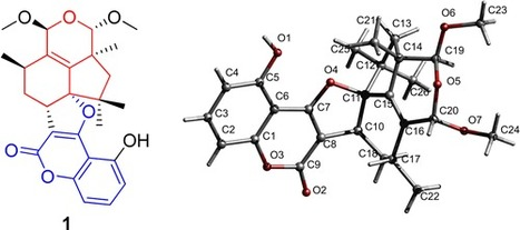 A Botryane Metabolite with a New Hexacyclic Skeleton from an Entomogenous Fungus Hypocrea sp. | Chemical Engineering | Scoop.it