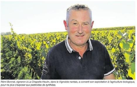 """«Ma vie de vigneron au contact des pesticides """"   Le vin quotidien   Scoop.it"""