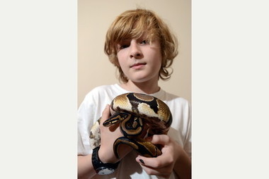 Youngster launches campaign for animal welfare in Cheltenham | Animals R Us | Scoop.it