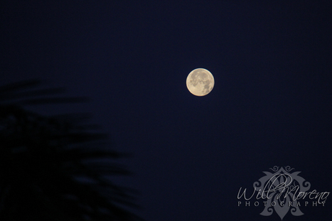 Romantic Moon over Belize | Belize in Photos and Videos | Scoop.it