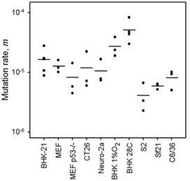 PLOS Pathogens: Variation in RNA Virus Mutation Rates across Host Cells | Virology and Bioinformatics from Virology.ca | Scoop.it