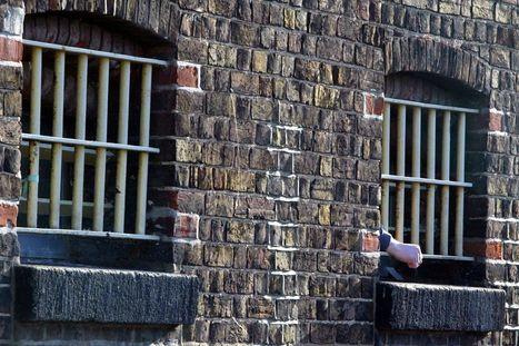 Barnardo's in plea for prison's thousands of 'hidden victim' children - WalesOnline | Probation | Scoop.it