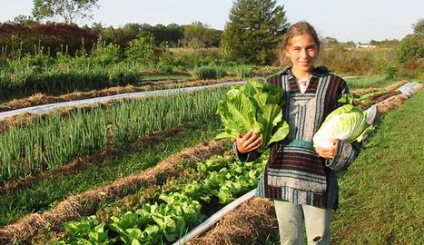 8 pruebas de que no necesitamos comida modificada genéticamente para alimentar al mundo | Cultivos Hidropónicos | Scoop.it