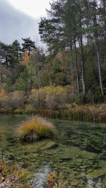 Metaanálisis sobre los valores de los servicios de los ecosistemas en España | Mercados de Medio Ambiente | Infraestructura Sostenible | Scoop.it