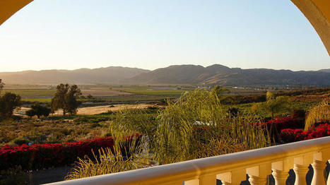 Sample the wine and the wow of Mexico's Guadalupe Valley, before the hordes descend   Baja California   Scoop.it
