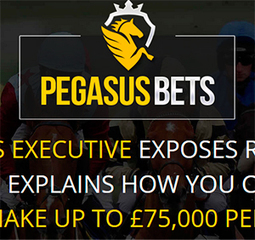 Pegasus Bets Review | Betting System Review | Betting Systems | Scoop.it