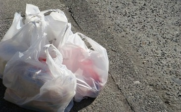 Plastic Bags Banned On Hawaii's Big Island | Earth Island Institute Philippines | Scoop.it
