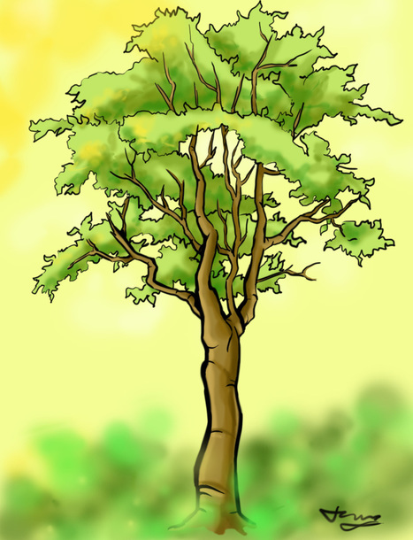 How to Draw a Detailed Tree | Random | Scoop.it