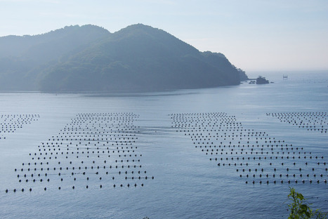Stunning aerial photos of the world's aquaculture operations | Aqua-tnet | Scoop.it