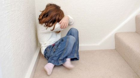 One in five children referred over suspected abuse - BBC News | Children In Law | Scoop.it