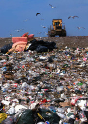 Landfill Decomposition Rates For Common Items | Solid Waste Sector | Scoop.it