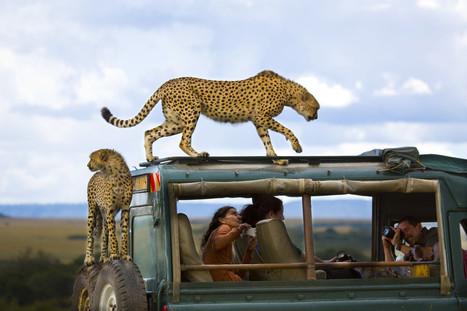 Premio de fotografía National Geographic 2013 (FOTOS) | Fotografía | Scoop.it
