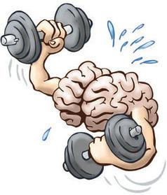 Building a better brain: Strengthening your mental muscle | Brainology | Scoop.it