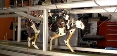 33rd Square: MIT's Robot Cheetah Making Strides | Science, Technology, and Current Futurism | Scoop.it