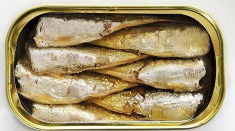 Menú saludable con sardinas en conserva y queso fresco | Recetas | Scoop.it