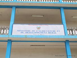 RD Congo : La Banque mondiale alloue 25 millions USD pour la production de riz | Questions de développement ... | Scoop.it