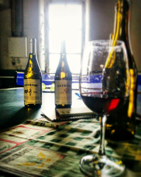 Wine and the art of living: Casal Figueira | Gastronomy & Wines | Scoop.it