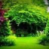 Southern Pine Landscape & Lawn Inc