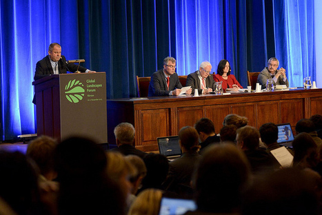 Executive Summary: Key messages and recommendations from the Global Landscapes Forum for UNFCCC negotiations and Sustainable Development Goals - Global Landscapes Forum | Warsaw | Coastal integrated management | Scoop.it