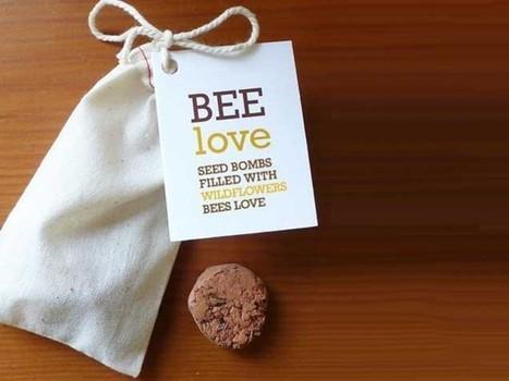 L'art d'être Green - Attirer les abeilles dans votre jardin | Funny News | Scoop.it