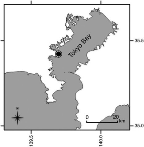 Microplastic fragments and microbeads in digestive tracts of planktivorous fish from urban coastal waters | Marine Litter Updates | Scoop.it