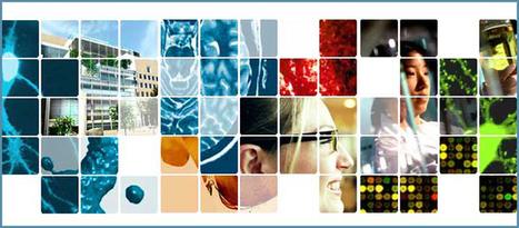 Brain and Cognitive Sciences | MIT OpenCourseWare | Free Online Course Materials | Neurociencia Cognitiva | Scoop.it