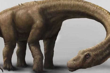 Découverte du plus gros dinosaure au monde (vidéo) | Remembering tomorrow | Scoop.it