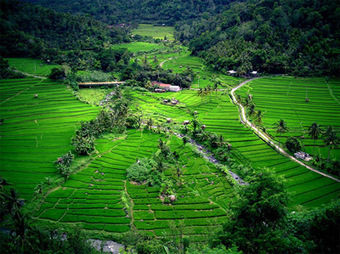 Bali Tourist Attractions, History, and Location – Indonesia | Beauty of Indonesia | Scoop.it