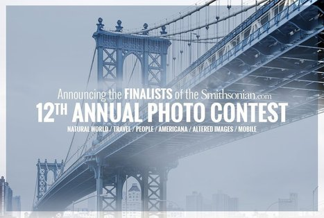 Finalists of the 12th Annual Smithsonian.com Photo Contest | 16s3d: Bestioles, opinions & pétitions | Scoop.it