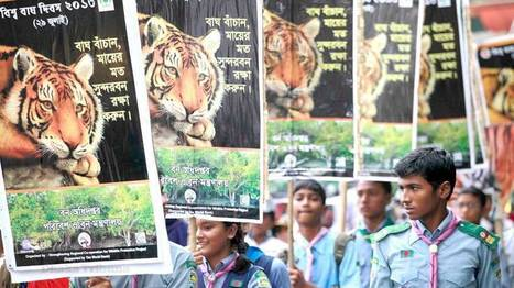 Asia:  Wildlife poaching hotline launched -  number 01755660033 | Wildlife Trafficking: Who Does it? Allows it? | Scoop.it