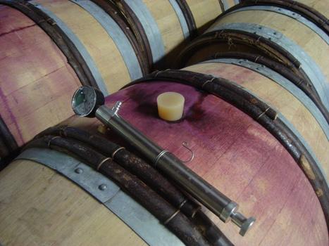 Imprégnation des lies de bois pour la vinification | Le Vin et + encore | Scoop.it