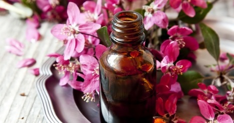 What You Haven't Know About Natural Essential Oils | Aromaaz International - Buy Pure and Natural Essential oils at Wholesale prices | Scoop.it