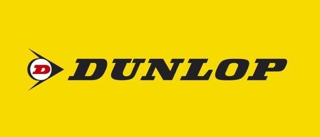Pneumatiques Dunlop | Etude de marché : vulco | Scoop.it