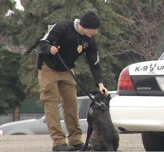 Tweet from @KXMB | canine unit | Scoop.it