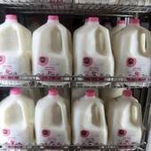 Milk prices could soar in coming months   Coffee Party News   Scoop.it