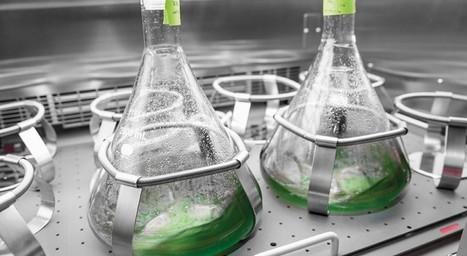 Audi desarrolla un combustible sintético a base de agua y dióxido de carbono   Infraestructura Sostenible   Scoop.it